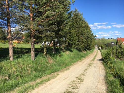 Widok ze ścieżki spacerowej na nasze osiedle